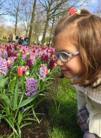Little girl with glasses smelling the purple flowers in Keukenhof Gardens in The Netherlands