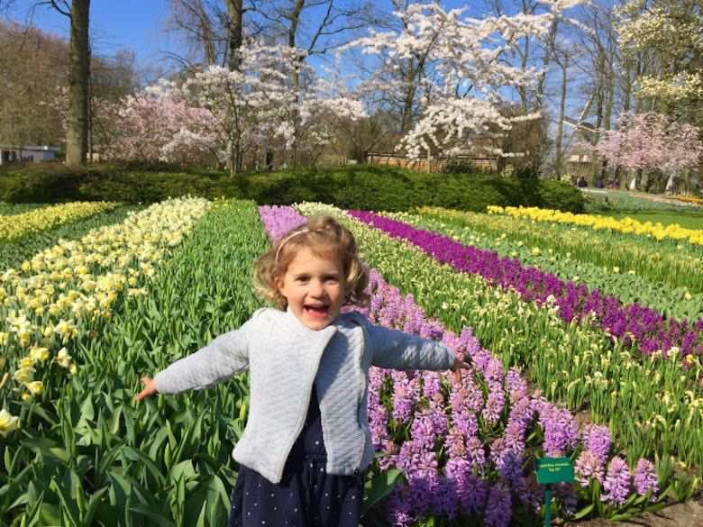 Little girl with a smile on her face posing in delight with arms wide open in front of a field of flowers in yellow and purple tones in Keukenhof Gardens in Holland