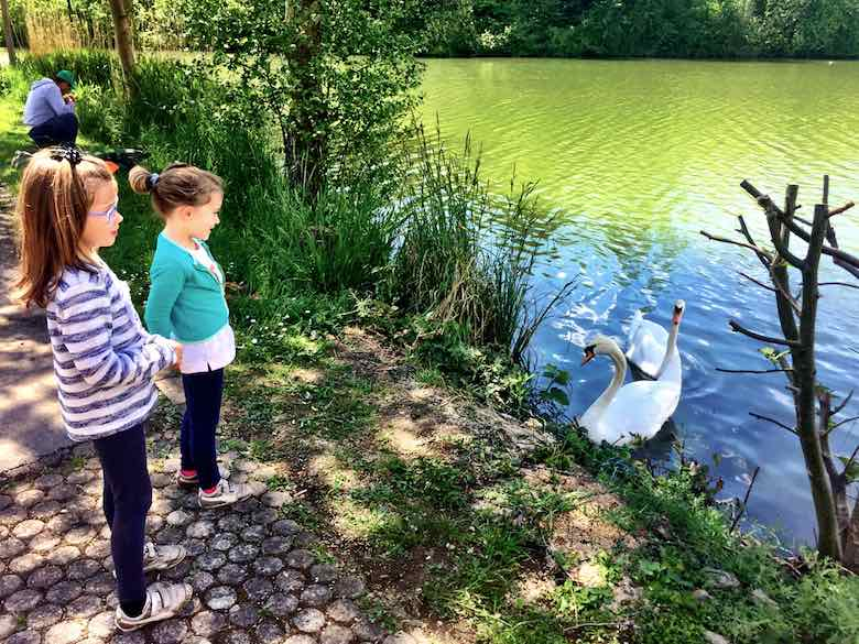 CosmopoliGirls Alegra & Jade meeting the local swans at lake Echternach in Luxemburg