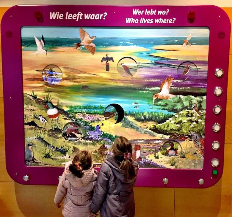 Achteraanzicht van twee meisjes die interageren met een display in Ecomare te Texel
