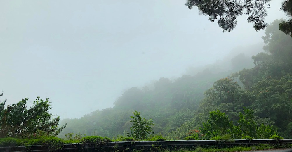 Foggy day for a Road to Hana trip
