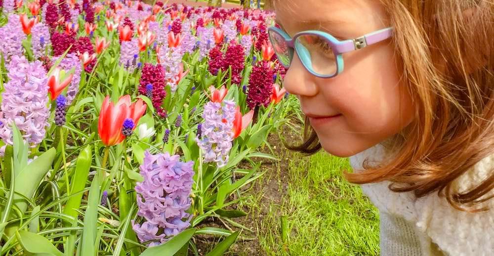 Little girl smelling the flowers at Keukenhof Gardens in the Netherlands