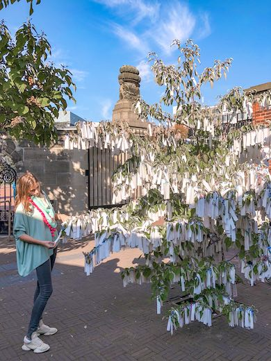 Reading the peace wishes in the wish tree next to the Peace palace is one of the essential things to do in The Hague
