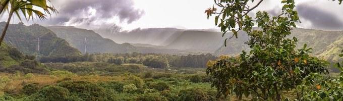 Maui hikes: Volcano, mountain, coastal and waterfall hikes on Maui
