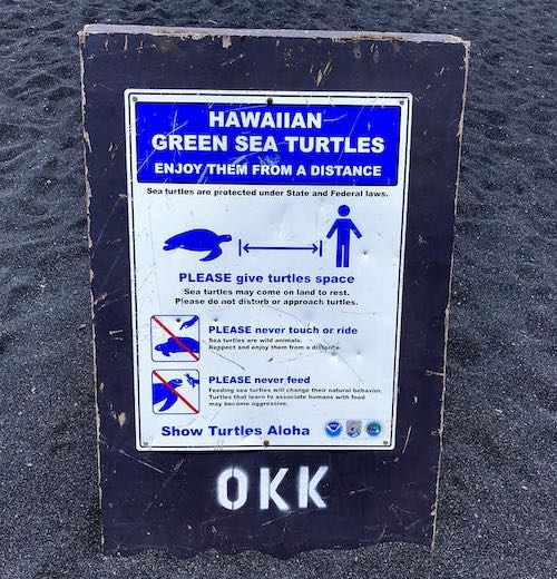 Sign that says to show turtles aloha because the meaning of aloha is wider than just helo
