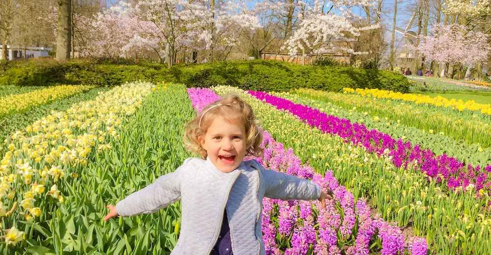 Little girl enjoying the flowers at the Keukenhof tulip garden Holland