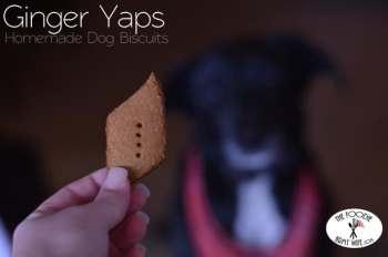 Ginger Yaps