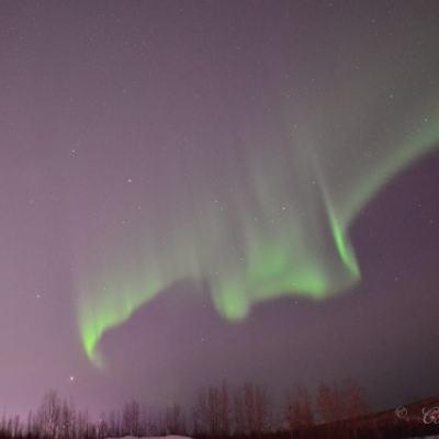 The Last One | #AuroraBorealis
