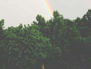 Wordless Wednesday: Rainbow | A Photography post from Cosmopolitan Cornbread