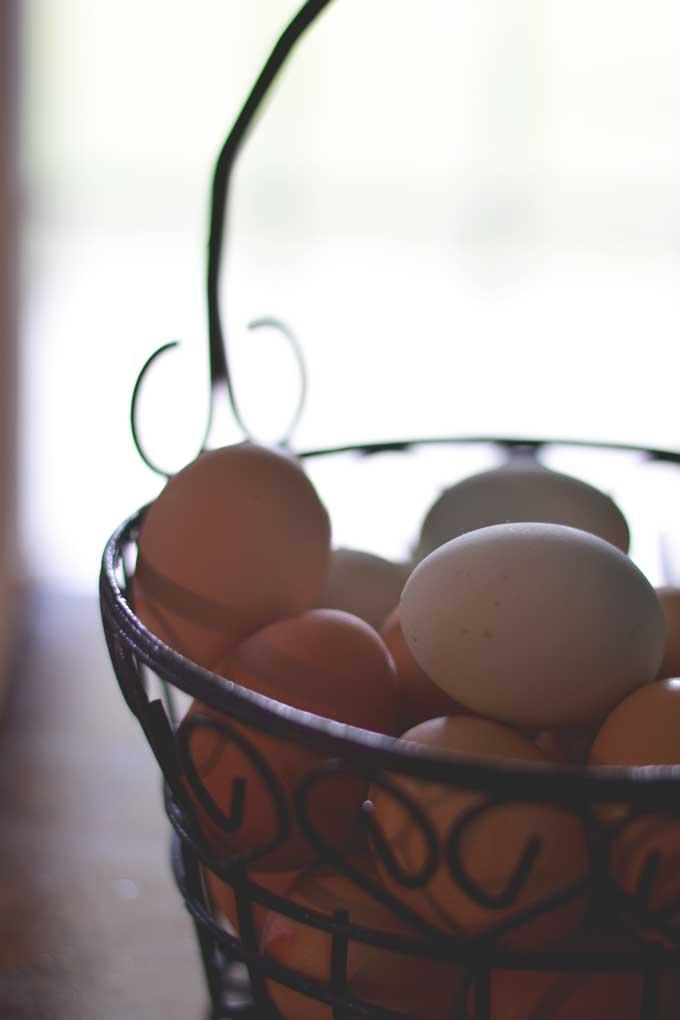 Farm Fresh Eggs - a Photography Post from Cosmopolitan Cornbread