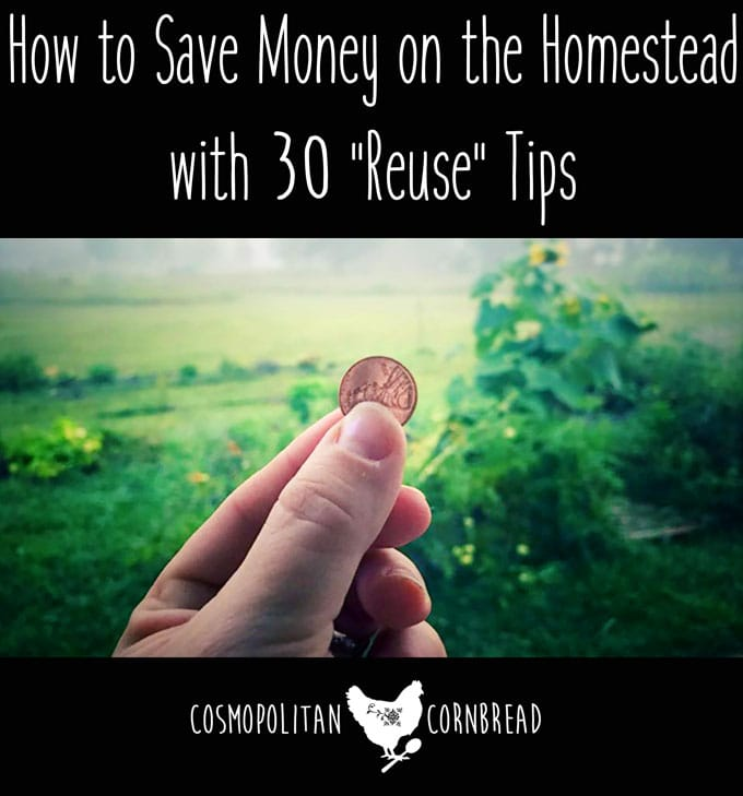 30 Penny Pinching Tips to Save Money by Reusing Things You Normally Throw Away or Recycle | Cosmopolitan Cornbread