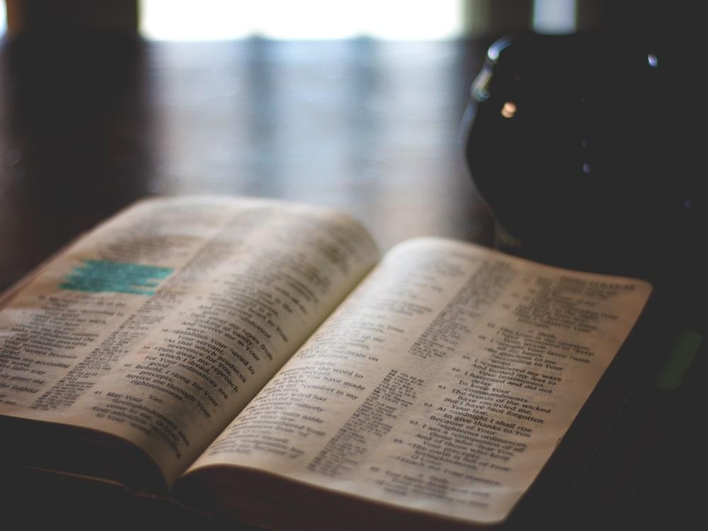 Old and New Testament Bible Reading Plan | Cosmopolitan Cornbread