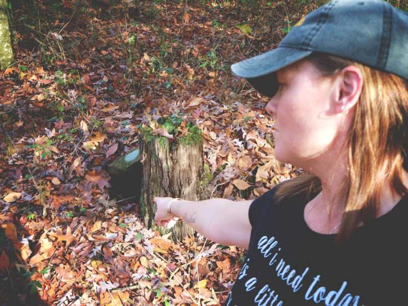 In this episode: A Road Trip through the mountains, and I finally figured out what is living in the animal den in the woods.