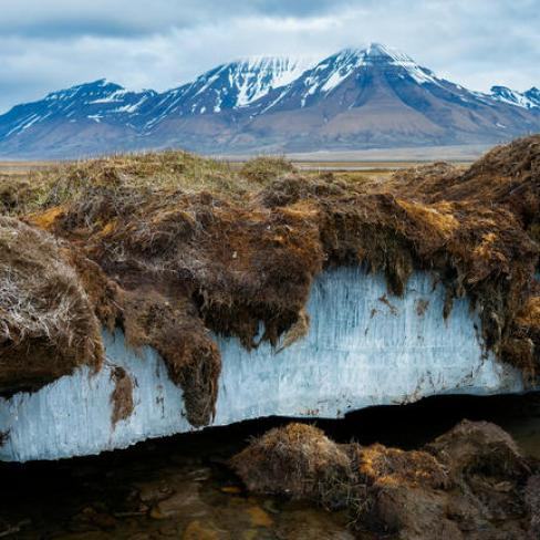 What happens if the permafrost disappears? - Cosmos Magazine