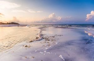 unrestricted_dreamscape_beach_background_stock_by_little_spacey-d6kycja