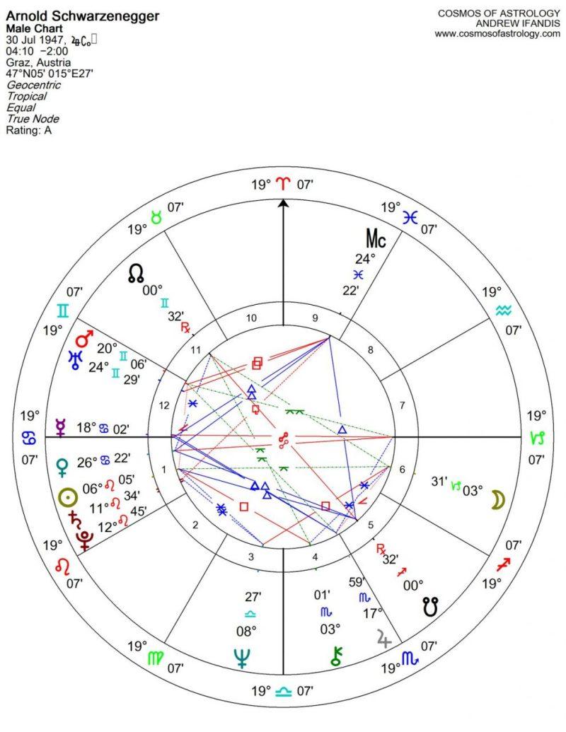 Arnold Schwarzcenegger Chart
