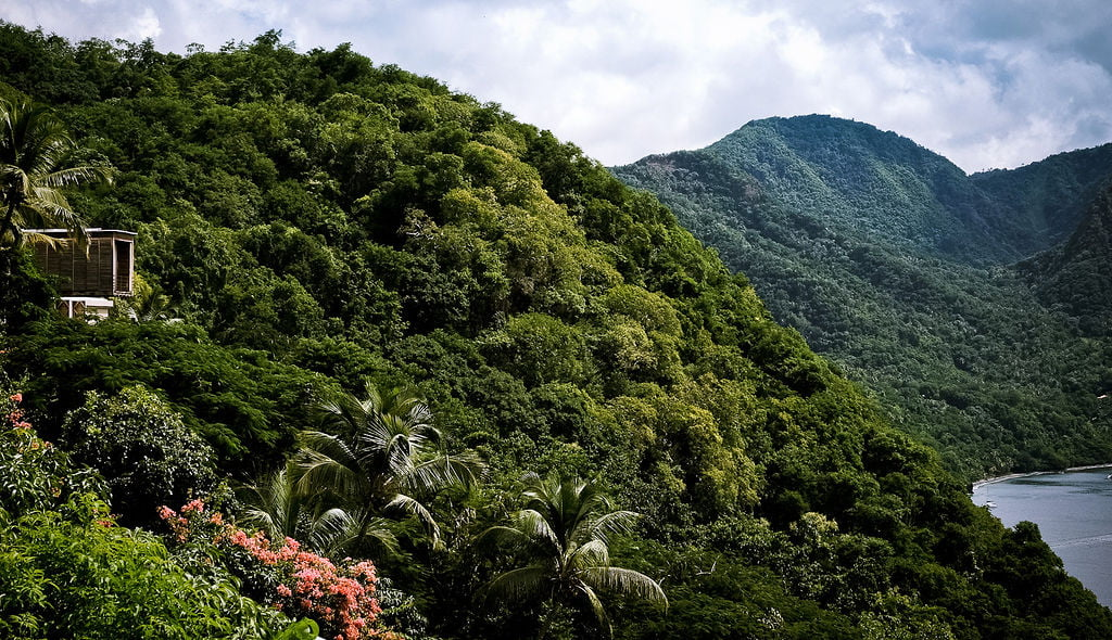 Cosmos St Lucia is pictured in lush vegetation, sitting high on a ridge above Anse Chastenet beach