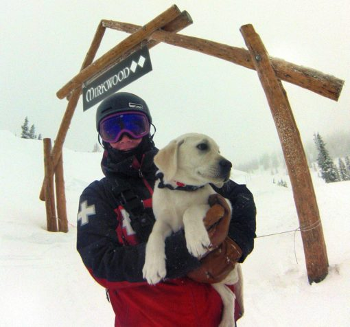 Introducing Glen the newest avalanche rescue dog at Monarch