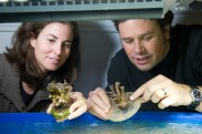 Liz Hemond and Prof. Vollmer at the Marine Science Center