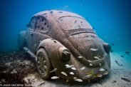 VW bug, Mexico. Photo: Jason deCaires Taylor.