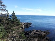 View of the Bay of Fundy from a beautiful coastal trail in Quoddy Head State Park