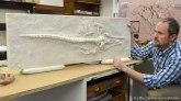 whale3dprint