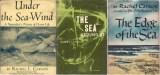 Carson book covers