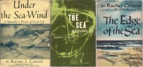 Carson book covers