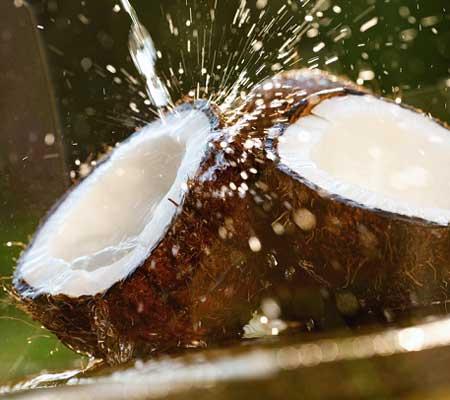 Apa de cocos