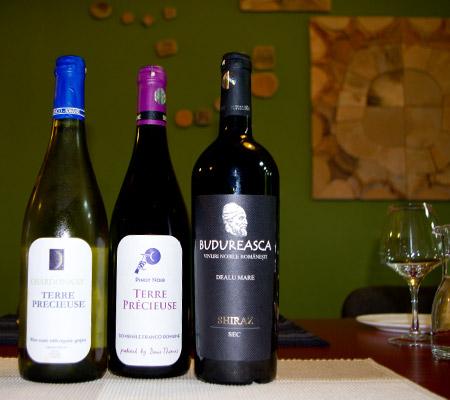 Vinuri DVFR + Shiraz Budureasca