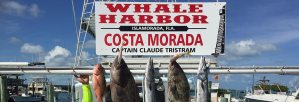 Whale Harbor Marina Fishing Charters