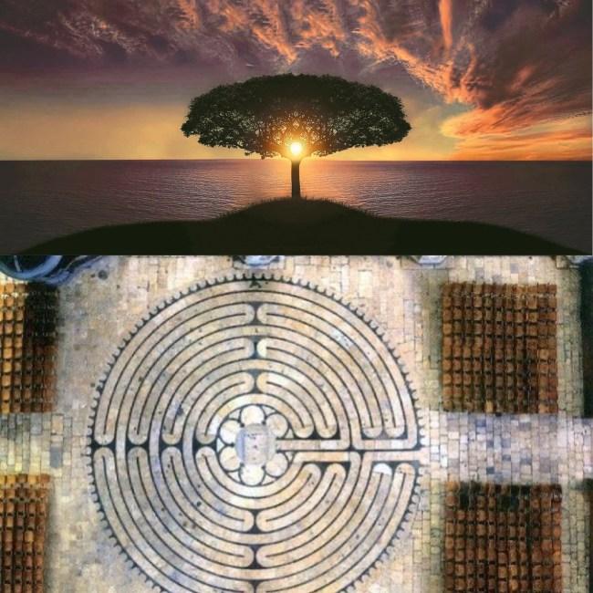 simboli albero labirinto