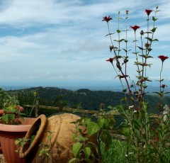 ocean view home for sale in San Ramon Costa Rica