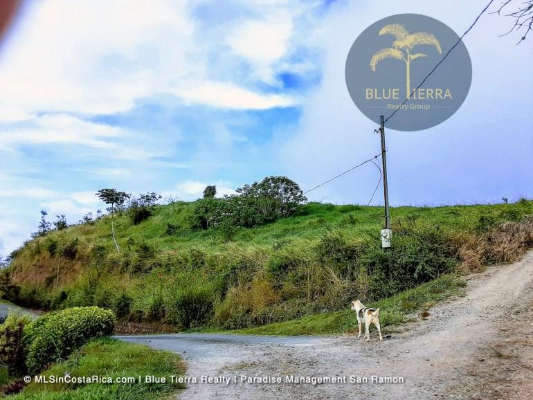 LOT FOR SALE SAN RAMON COSTA RICA