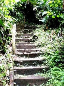 El Silencio Trail - Hike Stairs