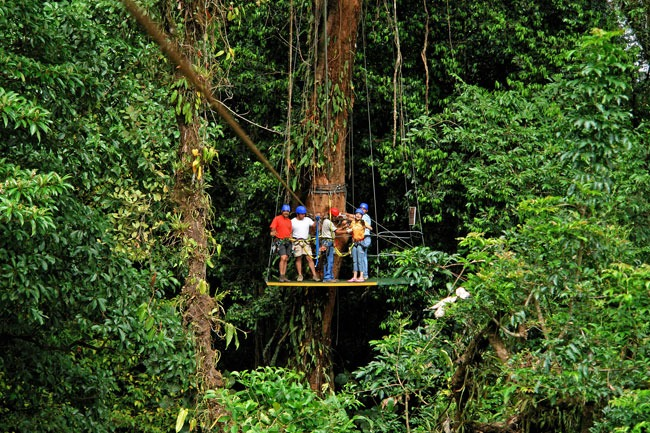 Canopy Tour (Ziplining) - Ecoglide