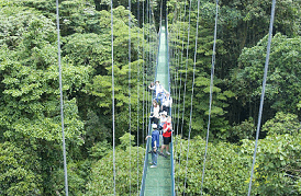 The Best Hanging Bridges Costa Rica: Comparing 4 Popular Hanging Bridges In Arenal And Monteverde
