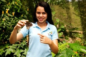 Butterfly Farm - Arenal Eco Zoo