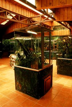 Selvatura's Herpetarium