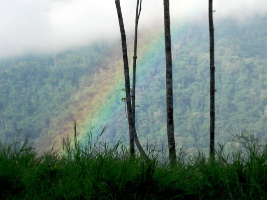 Costa Rica's Rain Season: A little rain never hurt anyone... it may even create a rainbow!