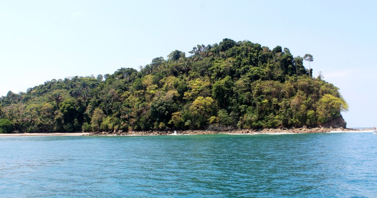 Superb Sailing, Snorkeling, & Dolphin Watching in Manuel Antonio, Costa Rica