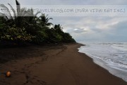 Costa Rica in April: Costs, Weather, Wildlife, Roads, Tourism Closures And More!