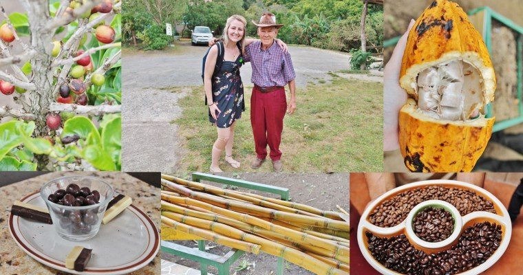 Monteverde's Trifecta Of Costa Rican Tradition, Temptation, And Trade: The Don Juan Coffee, Chocolate, And Sugar Cane Tour