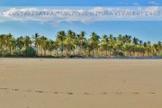Photos of Playa Cangrejal Costa Rica (Nicoya Peninsula) From Our Personal Collection