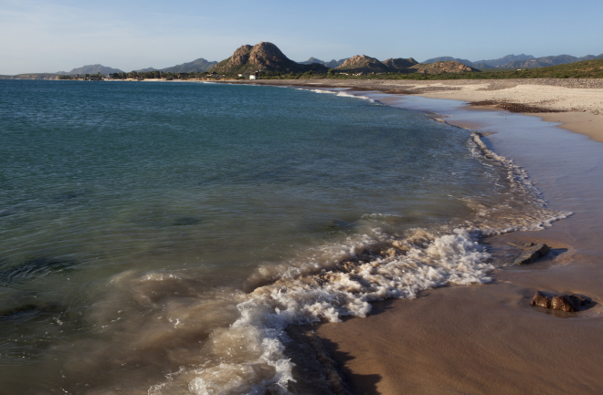 Cabo Pulmo National Park, Sea of Cortez (Gulf of California), Mexico, November
