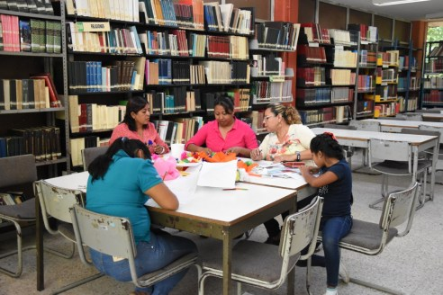 Bibliotecas municipales (2)