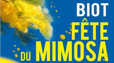 FiestadelaMimosaBiot