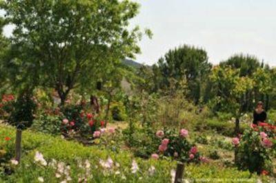 Jardines Perfumeria Mouans-Sartoux