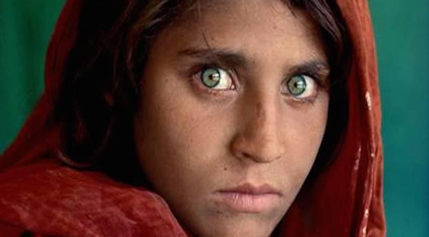 McCurry Niza
