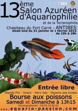 Antibes acoge una nueva edición del Salón de la Acuariofilia